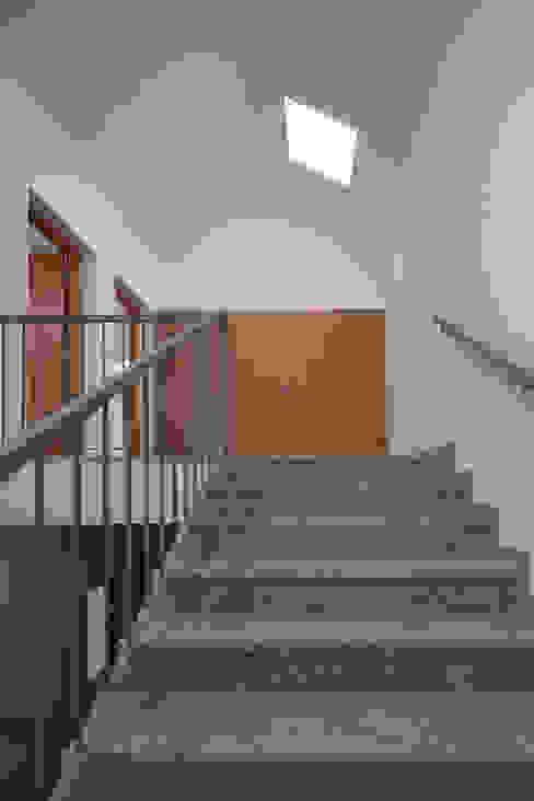 Reabilitação Casa junto ao Rio Corredores, halls e escadas minimalistas por Marques Franco Arquitectos Minimalista
