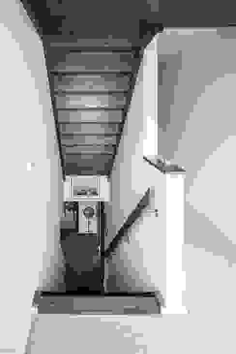 Stairs الممر الحديث، المدخل و الدرج من The Chase Architecture حداثي خشب Wood effect