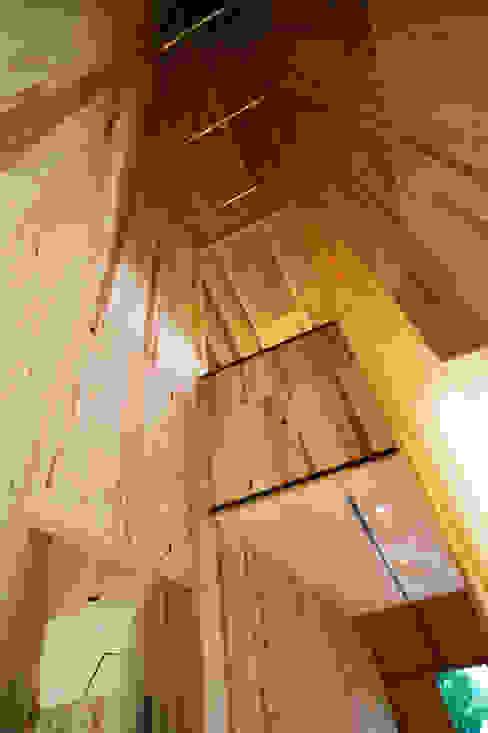 Walls by 山本想太郎設計アトリエ, Eclectic Wood Wood effect