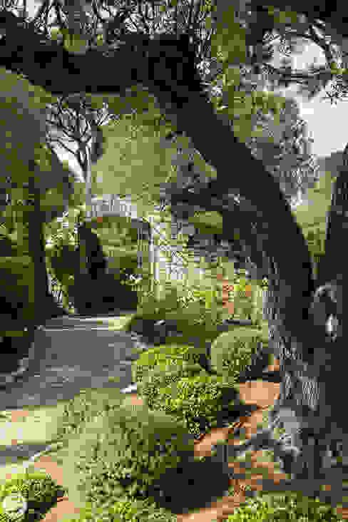 PASSAGE CITRON Mediterranean style garden