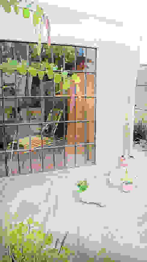 Balcones y terrazas modernos: Ideas, imágenes y decoración de Juan Carlos Loyo Arquitectura Moderno