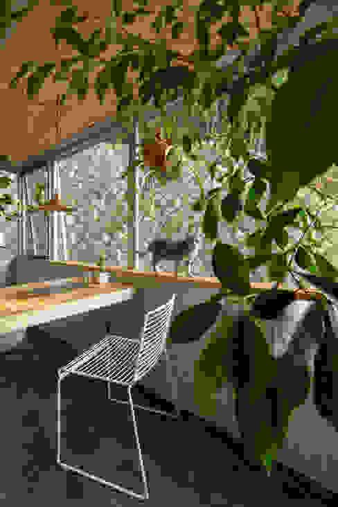 覚王山のリノベーション Nobuyoshi Hayashi Moderner Balkon, Veranda & Terrasse