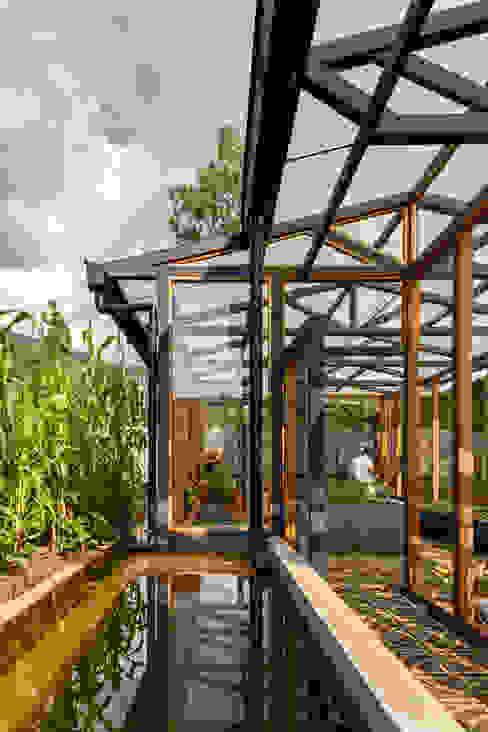 Jardines de invierno de estilo  por TAAR / TALLER DE ARQUITECTURA DE ALTO RENDIMIENTO , Moderno