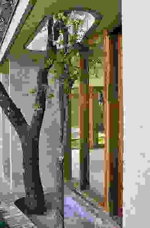 Casas modernas de Arq. Santiago Viale Lescano Moderno