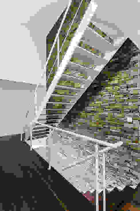 Modern walls & floors by ADOFF - Arquitetos Modern