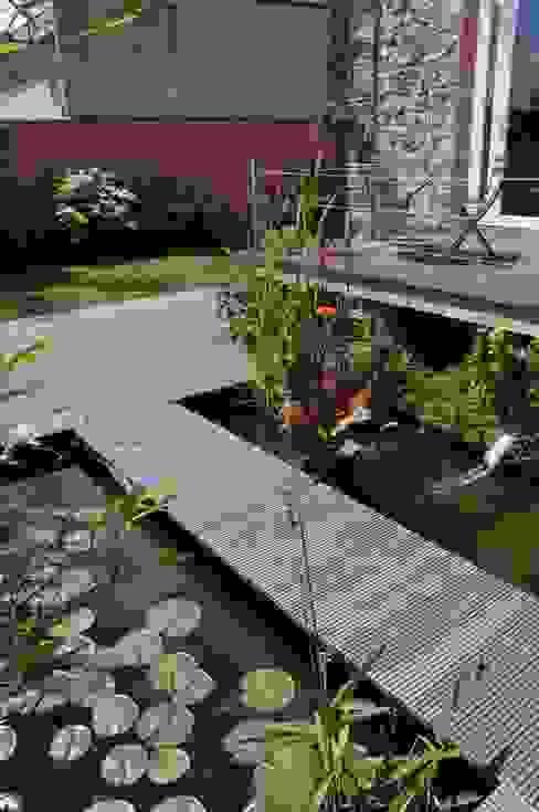 Vườn phong cách hiện đại bởi Taffin Hiện đại