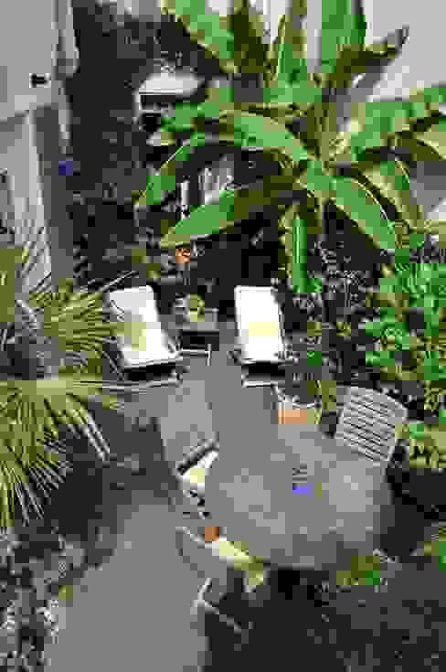 Terrasse tropicale et jardin de soleil à côté de Paris Jardin tropical par Taffin Tropical