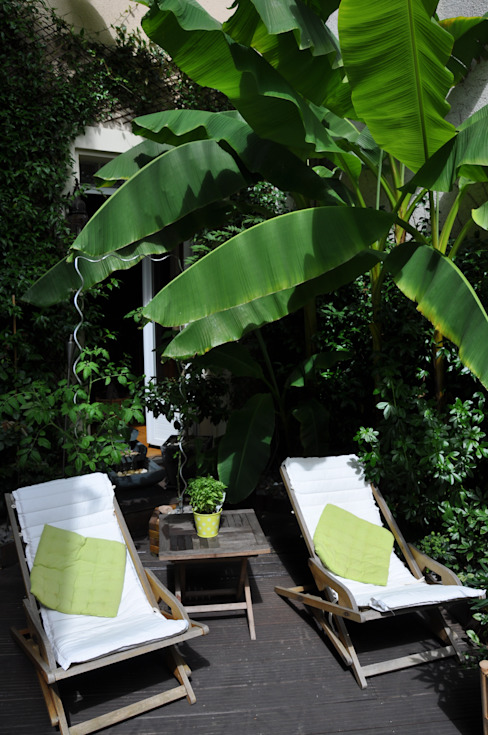 Tropical style garden by Taffin Tropical