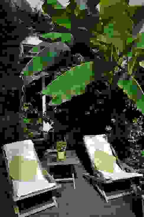Jardines tropicales de Taffin Tropical
