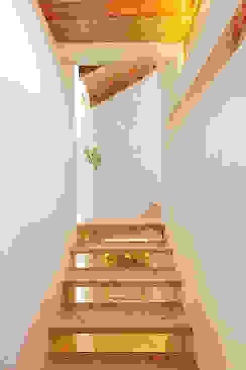 Pasillos, vestíbulos y escaleras rurales de pedro quintela studio Rural