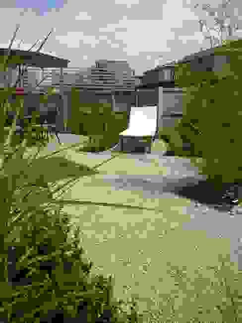 Canopy Lane Minimalist style garden by Aralia Minimalist Stone