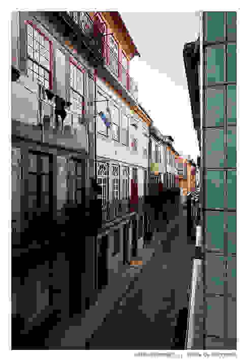 Casa do Pinheiro Casas clássicas por BAAU - Bernardo Amaral Arquitectura+Urbanismo Clássico