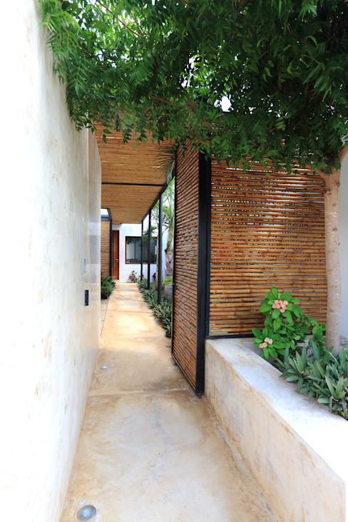 Tropical corridor, hallway & stairs by FGO Arquitectura Tropical Bamboo Green