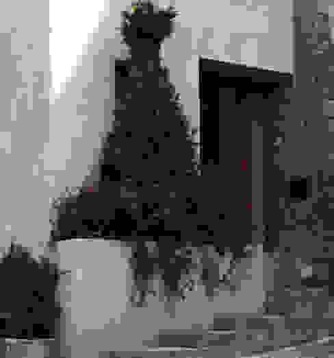 Casas de estilo  por Boué Arquitectos, Moderno