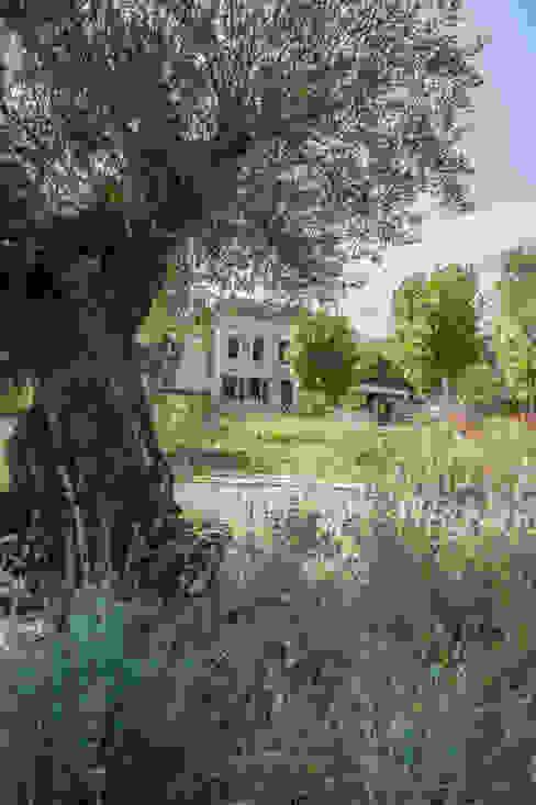 jardin haut Jardin méditerranéen par goodnova godiniaux Méditerranéen