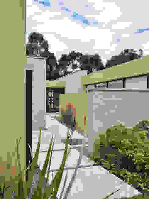 David Macias Arquitectura & Urbanismo ミニマルな 庭