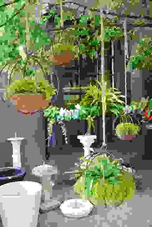Interior de estudio de jardines verticales Moderno