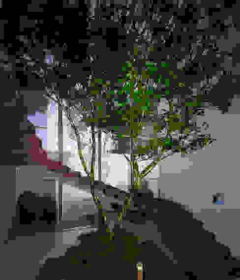 Modern corridor, hallway & stairs by PORTO Arquitectura + Diseño de Interiores Modern