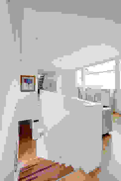 Modern corridor, hallway & stairs by mlnp architects Modern