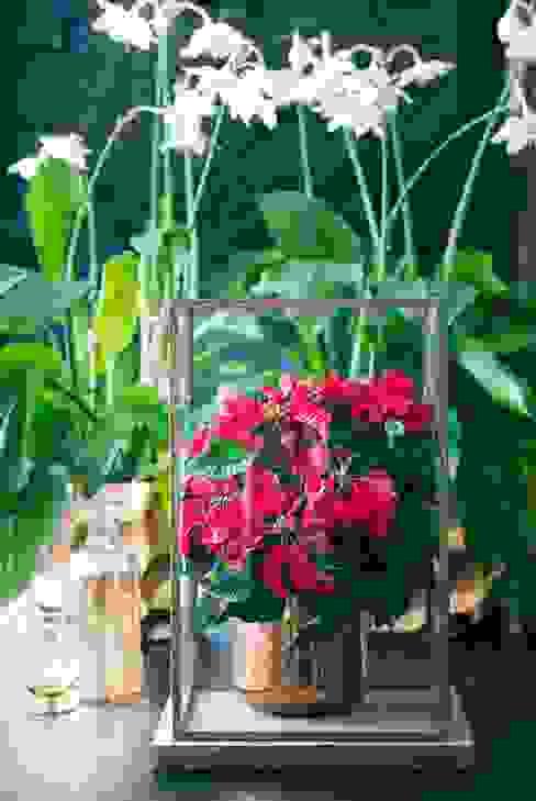 Pflanzenfreude.de Oturma OdasıAksesuarlar & Dekorasyon