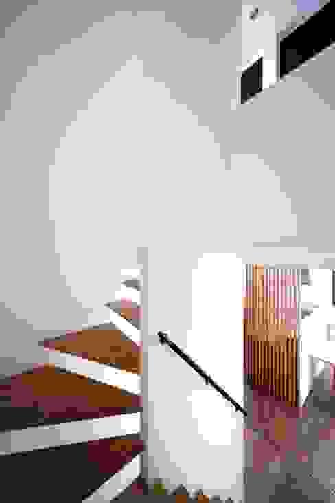 階段 モダンスタイルの 玄関&廊下&階段 の 6th studio / 一級建築士事務所 スタジオロク モダン