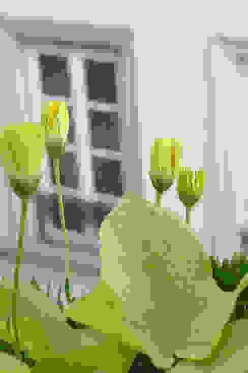 Des balconnières pour égayer les fenêtres Jardin moderne par homify Moderne Plastique