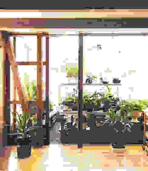 Jardines de invierno de estilo  por ユミラ建築設計室