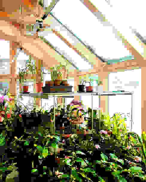 Modern conservatory by ユミラ建築設計室 Modern