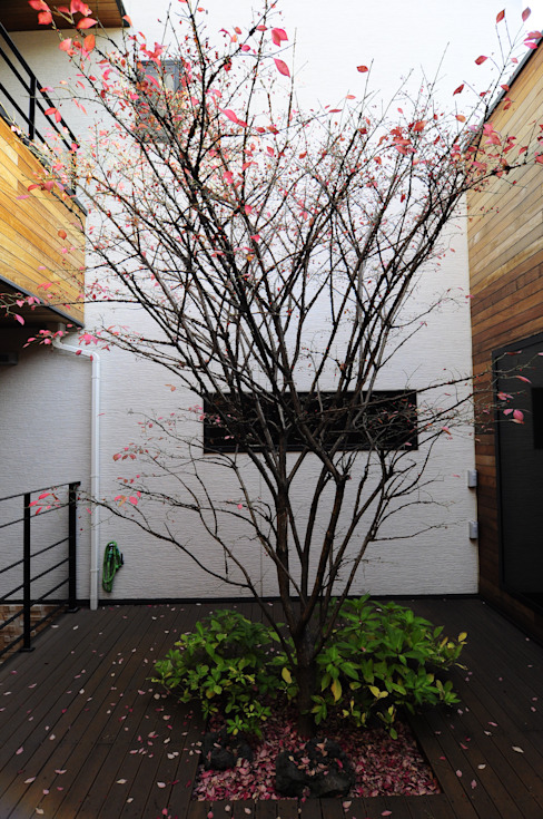 Patio House : 구도건축사사무소의  베란다,모던