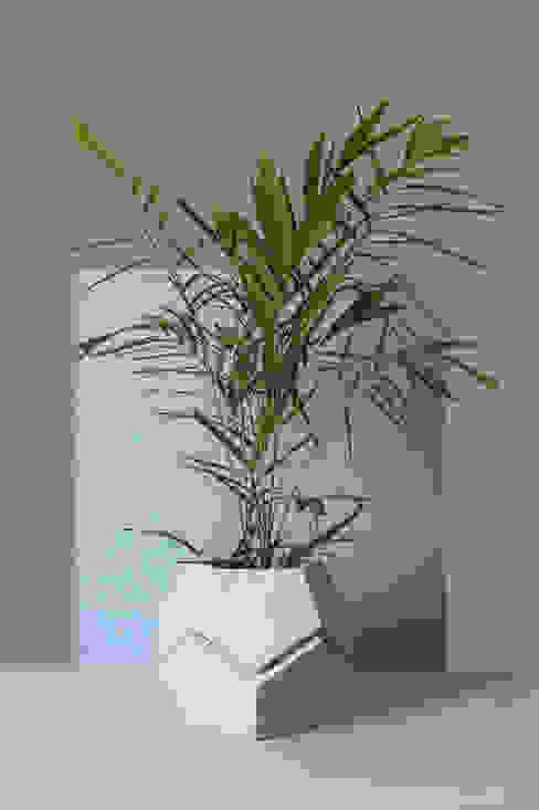 Acacia Edro, c.a HogarAccesorios y decoración Piedra Gris