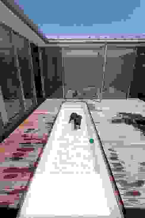 banhaus モダンスタイルの プール の ジャムズ モダン