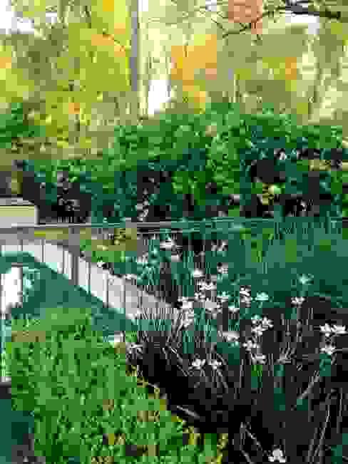 espacios que deslumbran: Jardines de estilo  por BAIRES GREEN,Clásico