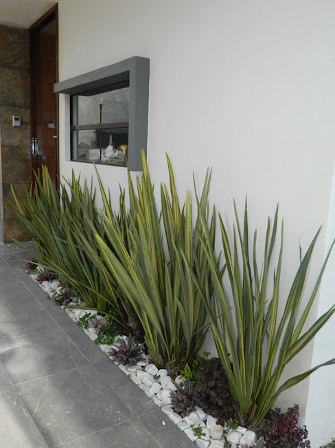 Jardines de estilo  por ECNarquitectura, Moderno