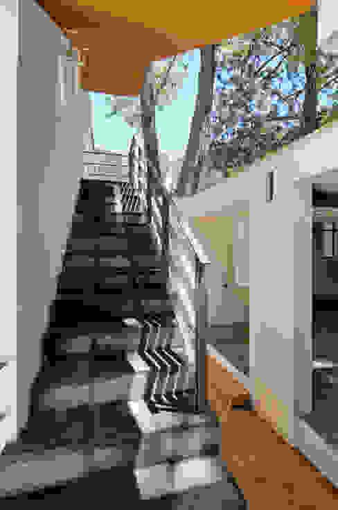 alexandro velázquez Pasillos, vestíbulos y escaleras de estilo moderno
