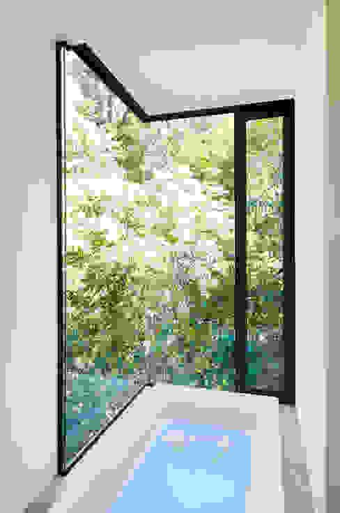 Casa La Lagartija Puertas y ventanas modernas de alexandro velázquez Moderno