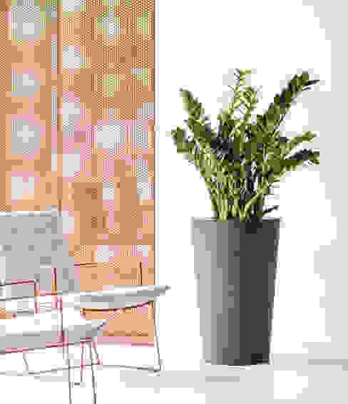 de style  par Hobby Flower, Moderne