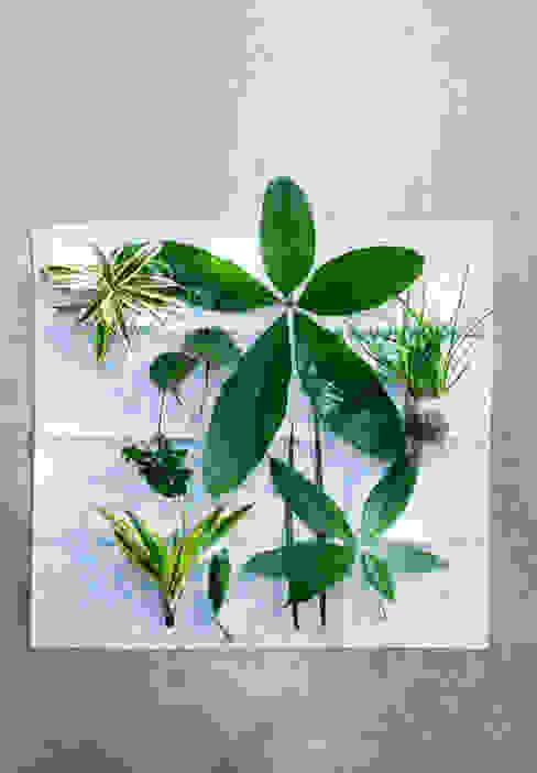 Binnenbeplanting door Pflanzenfreude.de,