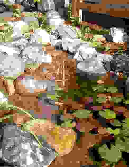 jardinier Kirikui Eclectic style garden