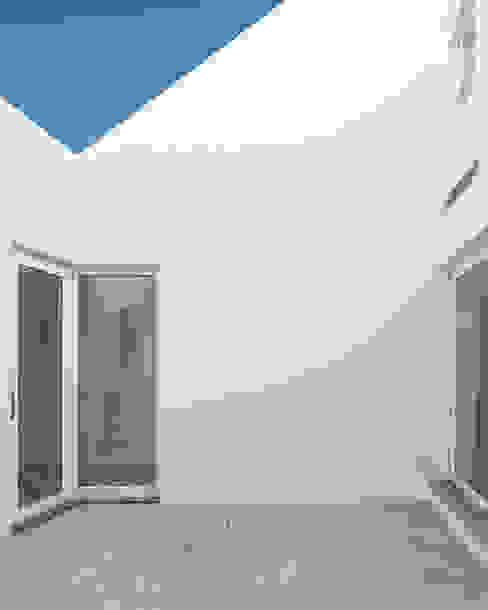Estudio ODS Jardines minimalistas