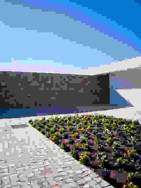 Casa do Zambujal Casas modernas por André Pintão Moderno Pedra