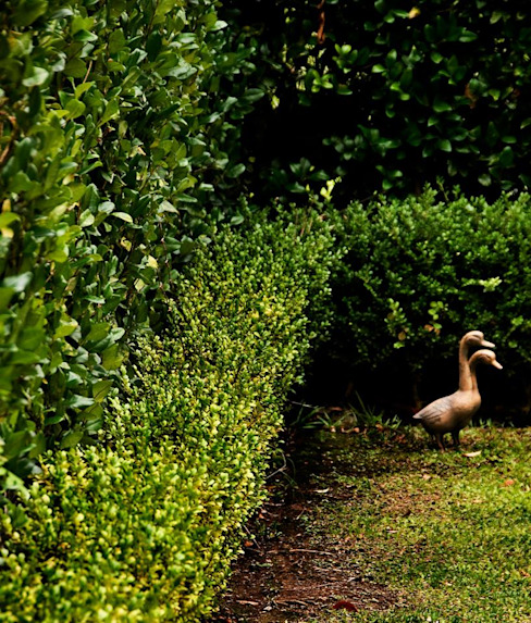 Jardins  por Arq. PAULA de ELIA & Asociados,