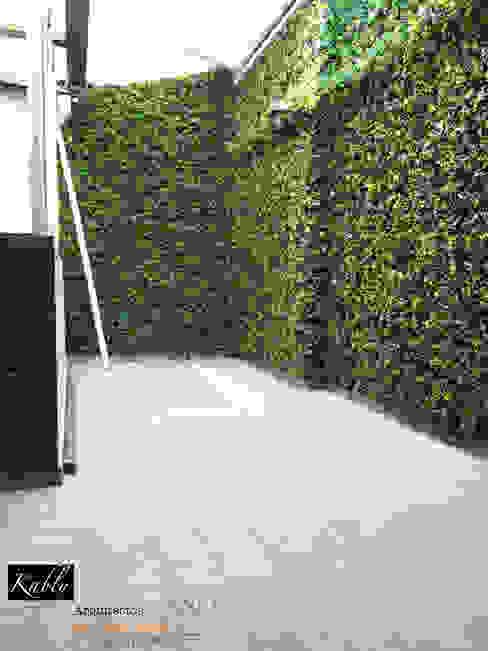 Terraza Temistocles Jardines minimalistas de Arquitectura101 + Kably Arquitectos Minimalista
