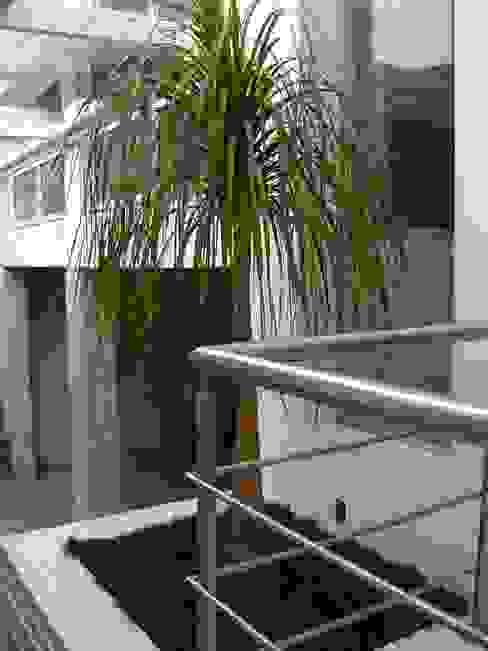 Taman Minimalis Oleh MC3 Arquitetura . Paisagismo . Interiores Minimalis
