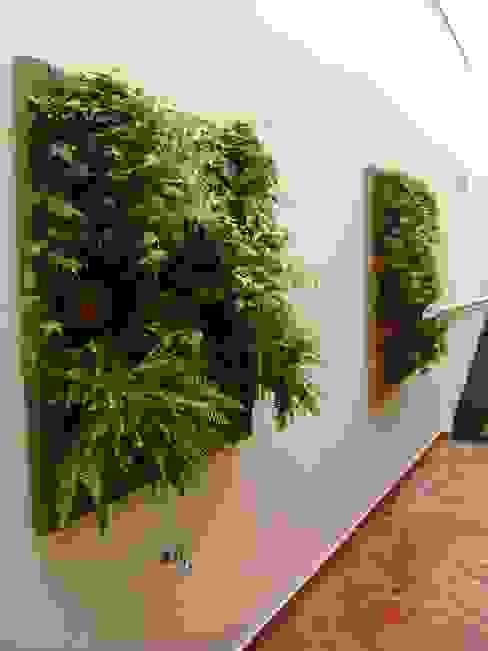 Jardines de estilo rústico de MC3 Arquitetura . Paisagismo . Interiores Rústico