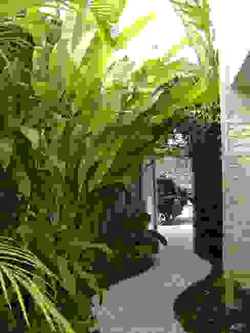 Jardin tropical par Eduardo Delphino Paisagismo Tropical