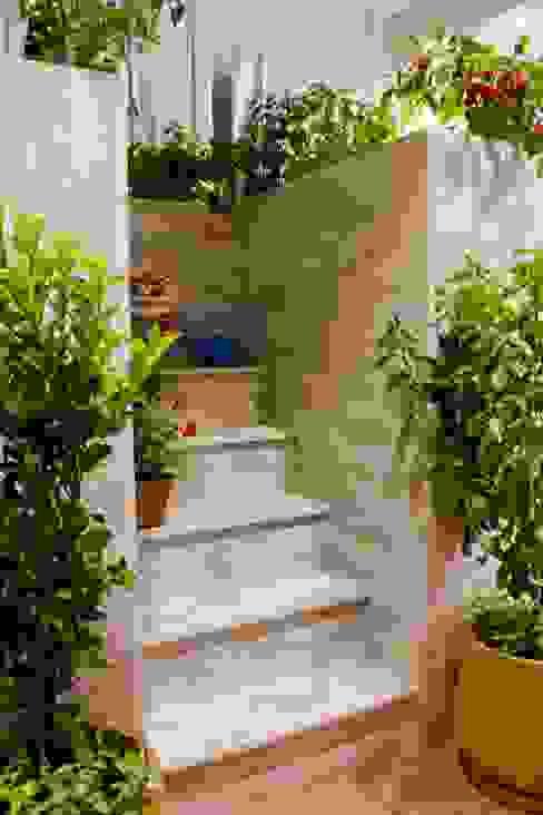Jardines de invierno de estilo moderno de AMMA PROJETOS Moderno
