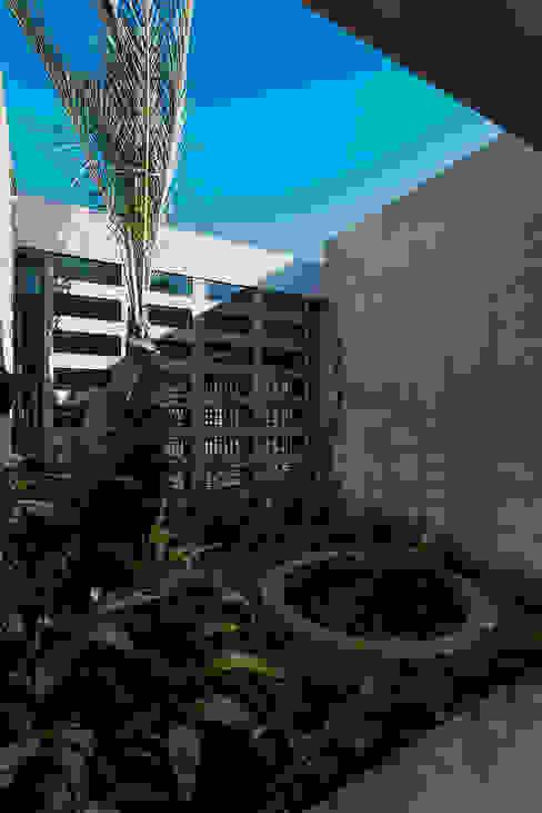 Garden by Taller Estilo Arquitectura, Modern