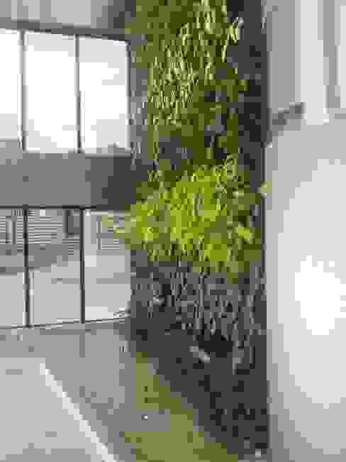 Jardín vertical: Jardines de estilo  por La Fabrica, arquitectos y Asociados C.A.
