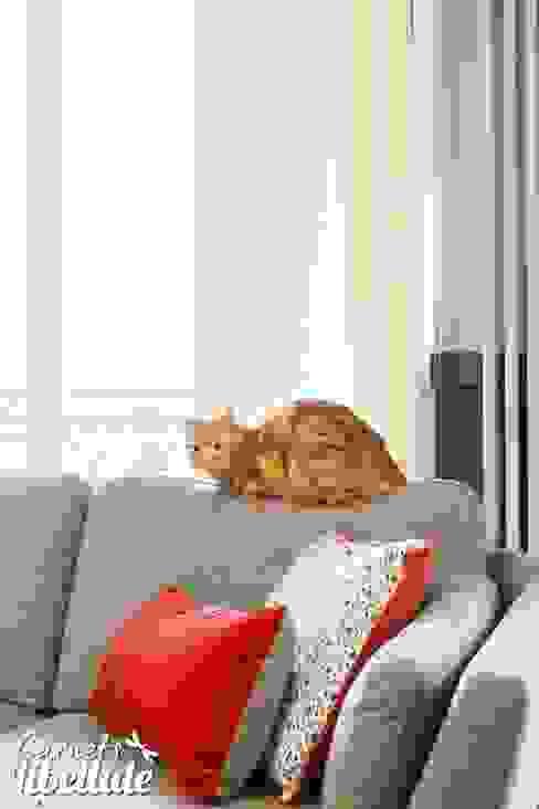 Modern Living Room by Carnets Libellule Modern