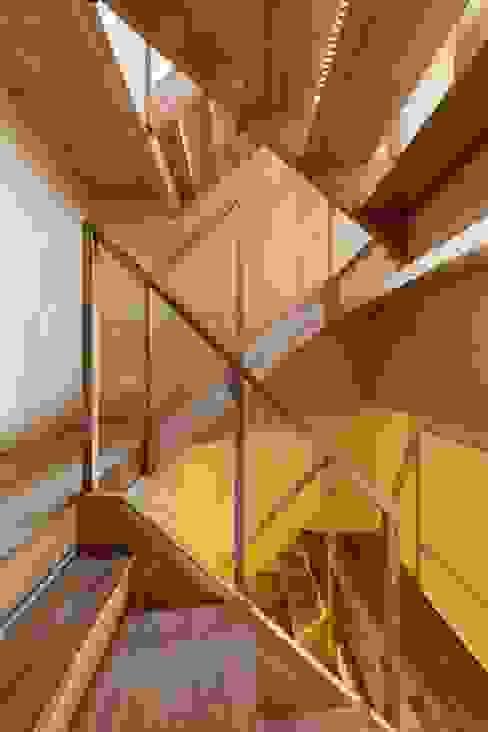 Stairs Kentaro Maeda Architects Modern corridor, hallway & stairs Wood Brown